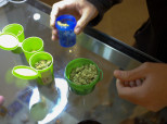 Michael Collins:  Will Congress Act on a Big Opportunity to Protect Medical Marijuana Users?
