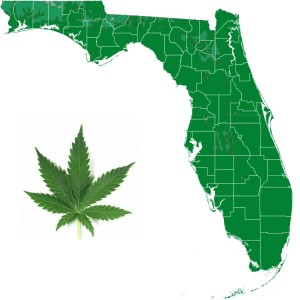 New Poll Shows Florida Medical Cannabis Initiative Winning This November