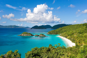 Senate Committee Unanimously Approves Cannabis Decriminalization Bill in U.S. Virgin Islands