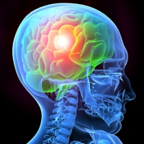 Study: THC Increases Survival Rates in People that Experience Traumatic Brain Injury