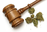 Federal Judge to Hold Hearing on Whether Cannabis Should be Removed as a Schedule 1 Drug