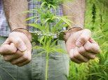 Even When Medical Marijuana Is Legal, There's Still A Part Where People Have To Break A Law
