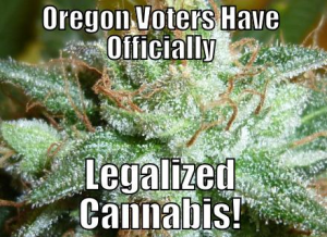 Initiative to Legalize Cannabis Approved by Oregon Voters