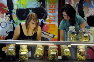 Review: Are marijuana tours in Colorado worth your time and money?