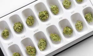 Colo. approves $8M in medical pot research grants, studies