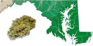 Companion Bills to Legalize Cannabis Filed in Maryland with Over 40 Legislative Sponsors