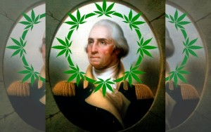 George Washington Likely Used Medical Cannabis
