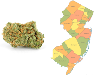 Coalition to Legalize Cannabis Formed in New Jersey