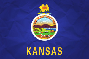 Kansas House Committee Votes to Legalize Medical Use of Cannabis Extracts