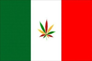 Here Comes Italy: The Next Country to Legalize Cannabis?