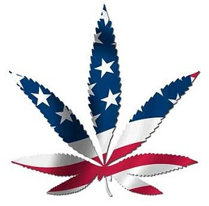 Federal Respect State Cannabis Laws Act Filed in U.S. Congress