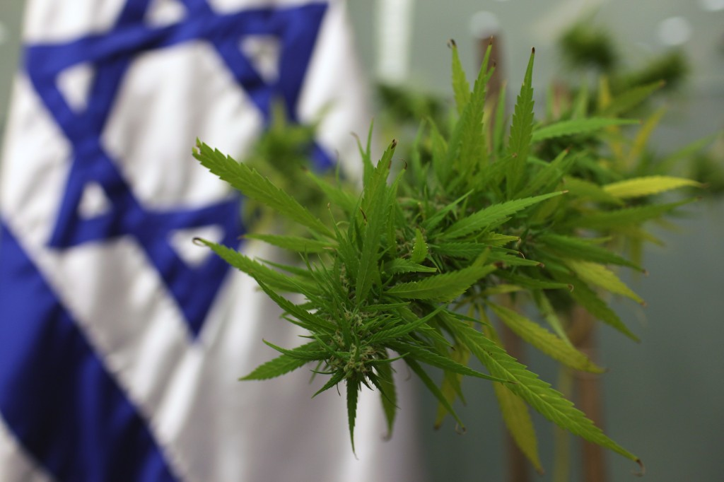 Israel: Over 90% of Medical Cannabis Patients Find Relief in the Medicine