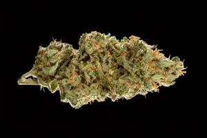 2016 NorCal Medical Cannabis Cup: Sativa Flower Entries