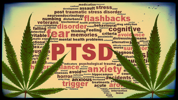 Rhode Island Legislature Passes Proposal to Make PTSD a Medical Cannabis Condition