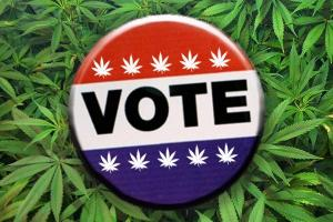 Pot Matters: 10 Reasons to Register and Vote