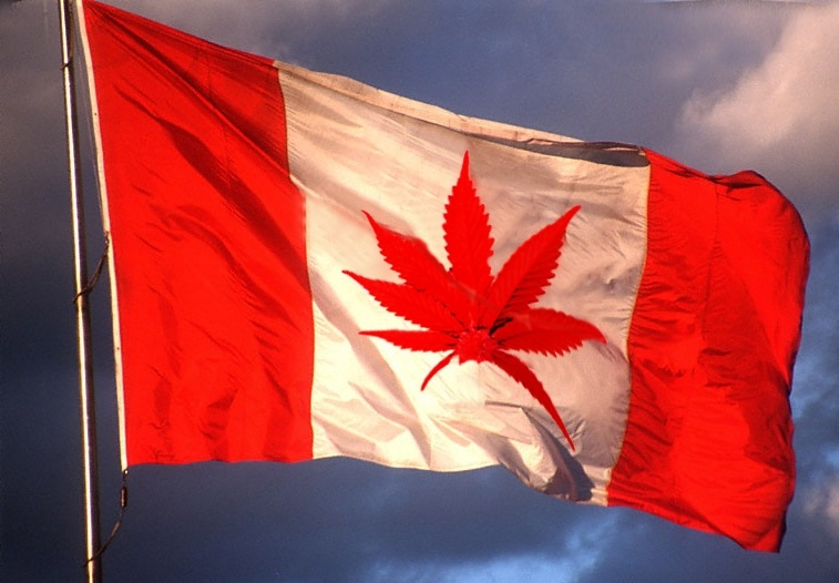Canada: 69% Support Legalizing Cannabis