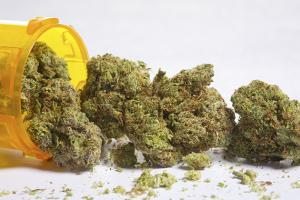 Medical Cannabis Therapy for Melanoma Being Developed at Australian University