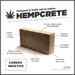 How Industrial Hemp Can Reduce Our Carbon Footprint