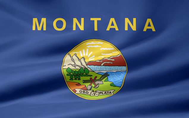Medical Cannabis Initiative Qualifies for November Ballot in Montana