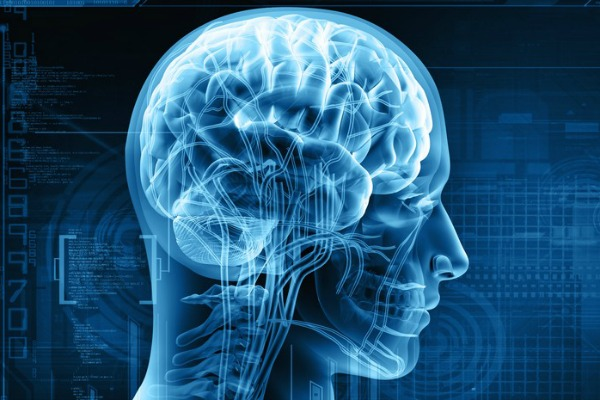 THC Stimulates Toxic Plaque Removal in the Brain, Blocks Inflammation, Finds Study