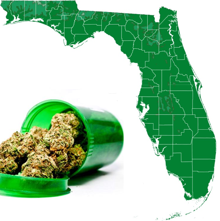 Poll: 77% of Florida Voters Support Initiative to Legalize Medical Cannabis