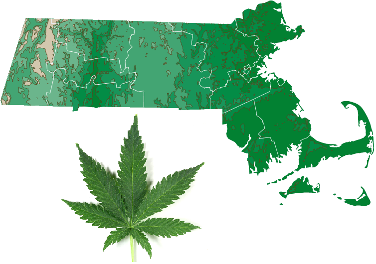 Massachusetts Cannabis Legalization Initiative Officially Placed on November Ballot