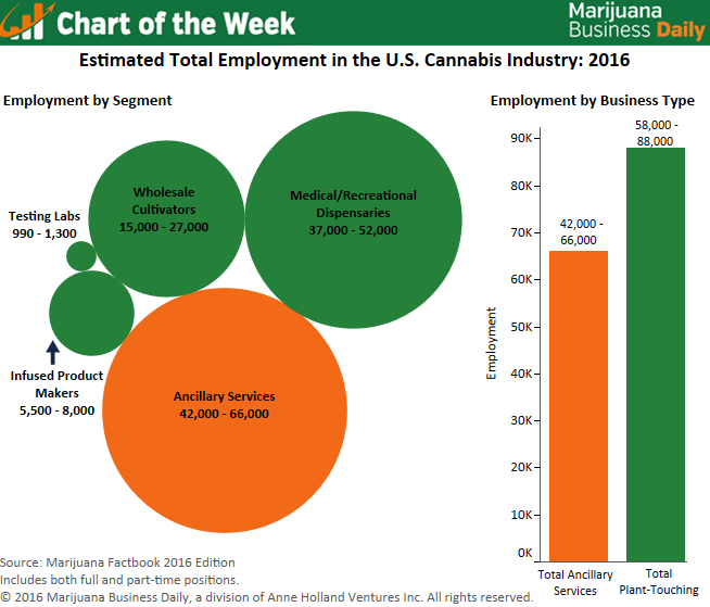 Marijuana Businesses Now Employ Over 100,000 People in the United States
