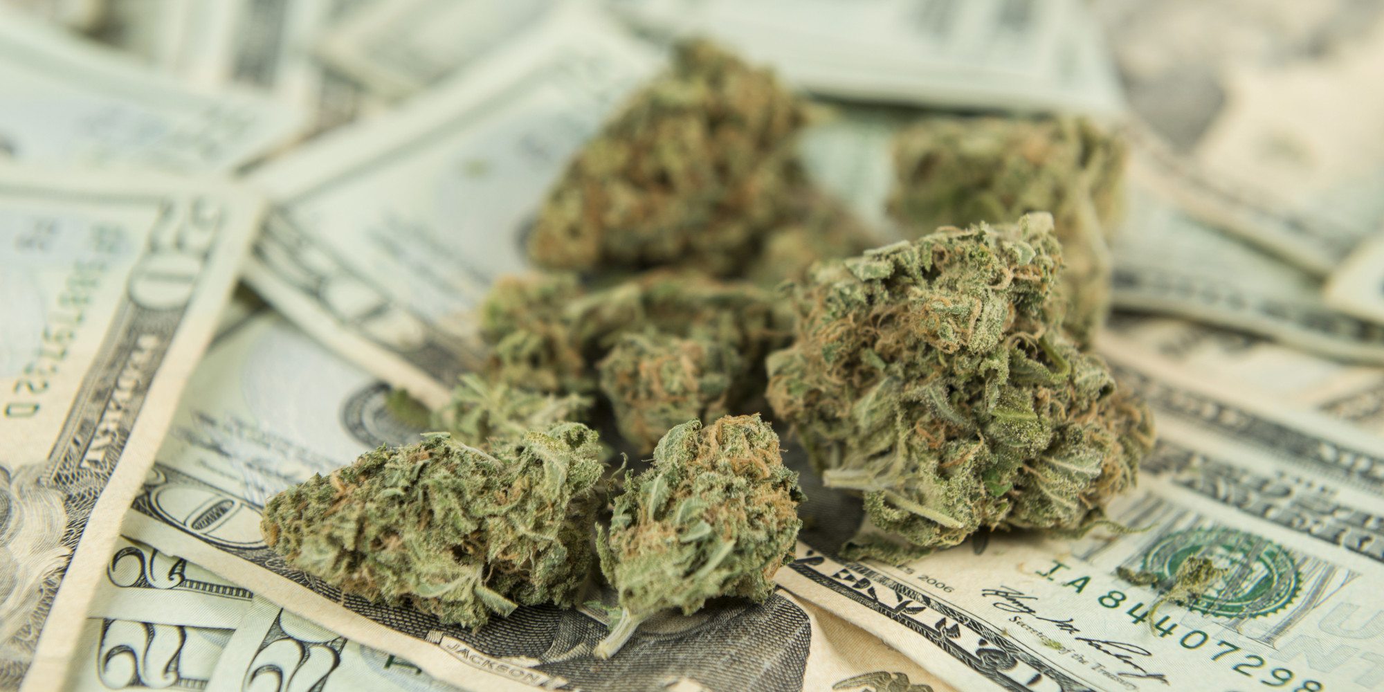 Report: If West Virginia Legalized Cannabis, State Would Get Tens of Millions in Annual Taxes