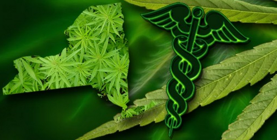 NY Expanding Medical Cannabis Program: Nurses to Recommend, Dispensaries to Deliver