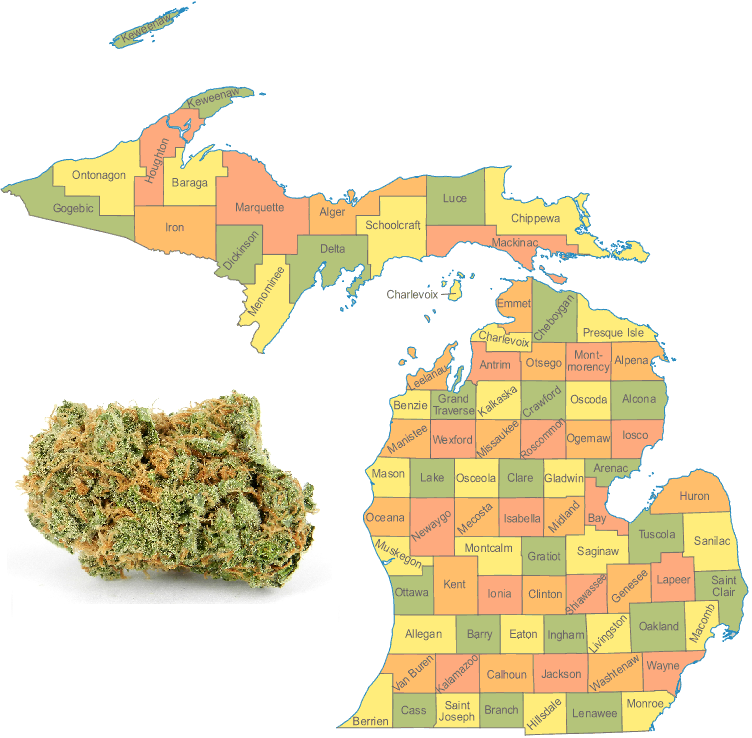 Michigan Senate Passes Bills to Legalize Medical Cannabis Dispensaries and Edibles