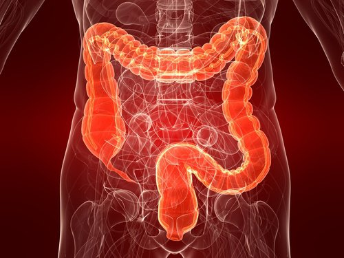 Study: Cannabinoids Play a Protective Role Against Colitis