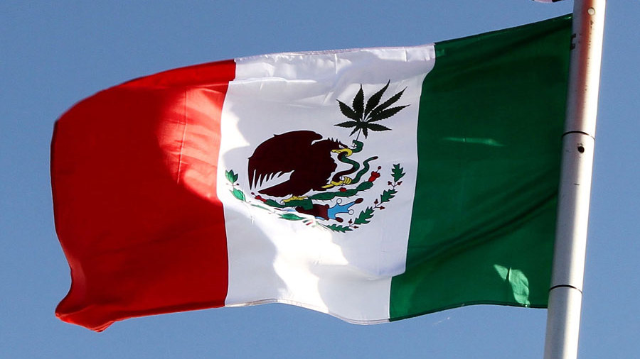 Mexico is Legalizing Medical Cannabis Next Week