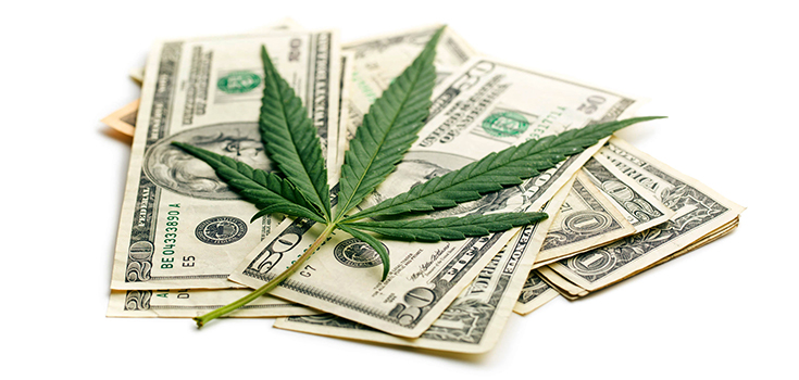 Oregon has Garnered Over $54 Million in Cannabis Taxes in 2016
