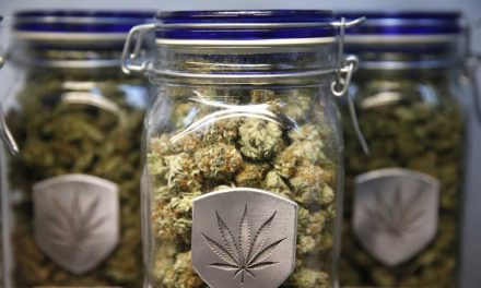 With No Public Input Massachusetts Lawmakers Delay Opening of Cannabis Outlets