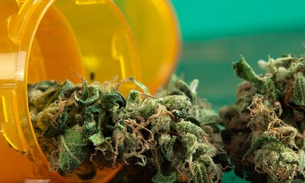 South Carolina Bills Filed to Legalize Medical Marijuana