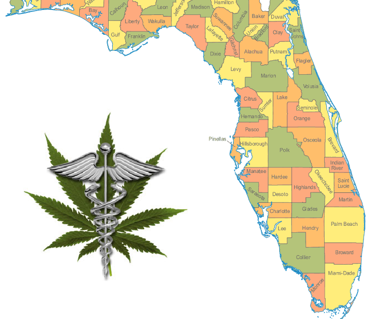 Florida Amendment 2 Takes Effect Tuesday: Here's What You Need to Know