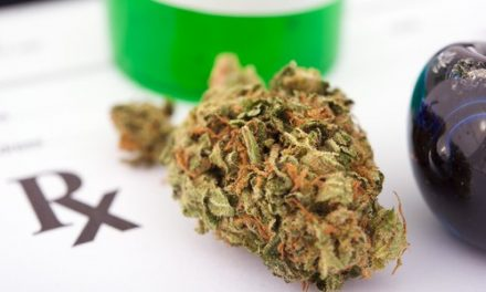 German Lawmakers Unanimously Legalize Medical Cannabis