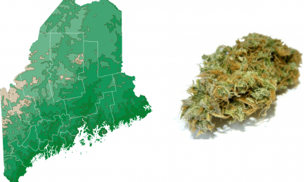 Marijuana Becomes Legal in Maine on Monday, January 30th: Most Progressive Cannabis Law in U.S.