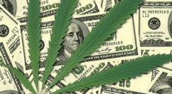 List of 98 Marijuana Stocks Includes Updating Charts