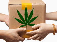 New Bipartisan Colorado Bill Would Legalize Marijuana Deliveries