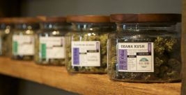 Oregon Senate Passes Measure to Ban Marijuana Outlets from Retaining Personal Information Over 48 Hours