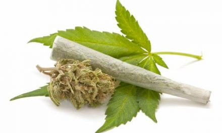 The Most and Least Marijuana Friendly Colleges