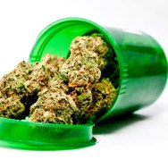 Hawaii: Proposal to Expand Medical Marijuana Law Passed by Two Senate Committees on Same Day