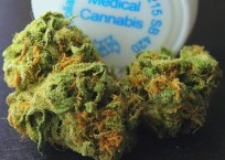 West Virginia House Gives Initial Approval to Medical Cannabis Legalization, Governor in Support