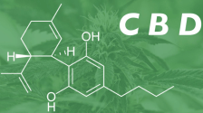 South Dakota Governor Signs Bill Making CBD a Schedule IV Substance