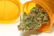 President Trump Signs Bill Protecting State Medical Marijuana Laws