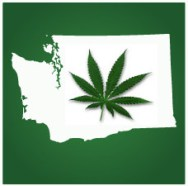 Washington Governor Signs Bill Legalizing Marijuana Sharing and Distribution of Seeds/Plants to Patients