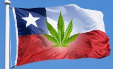 Chile: Medical Cannabis Now Being Sold in Pharmacies