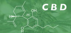 Study: CBD May Treat Psychiatric/Cognitive Symptoms Associated with Neurodegeneration