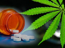 Study: 97% of Patients Say Cannabis Decreases Opioid Use